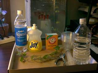 http://extension.entm.purdue.edu/401Book/images/collect/fig7.jpg